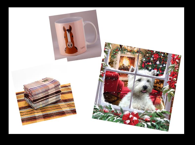 Chirstmas Shopping Polaroid 2019.png
