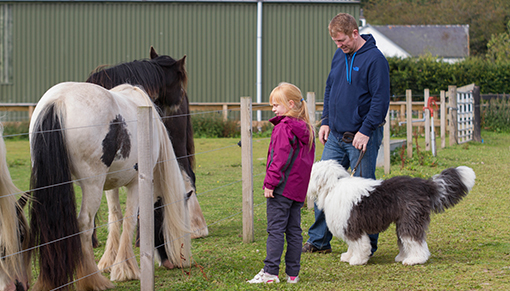 St Andrew's Day free activities at Redwings Mountains