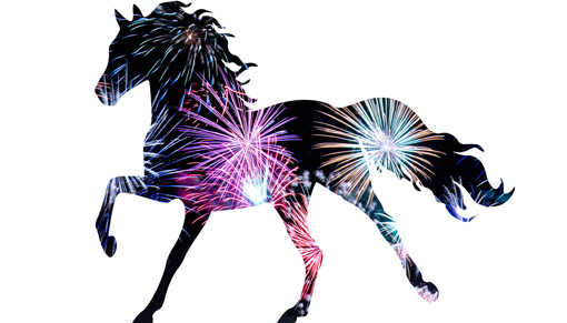 Keep your horse safe this fireworks season