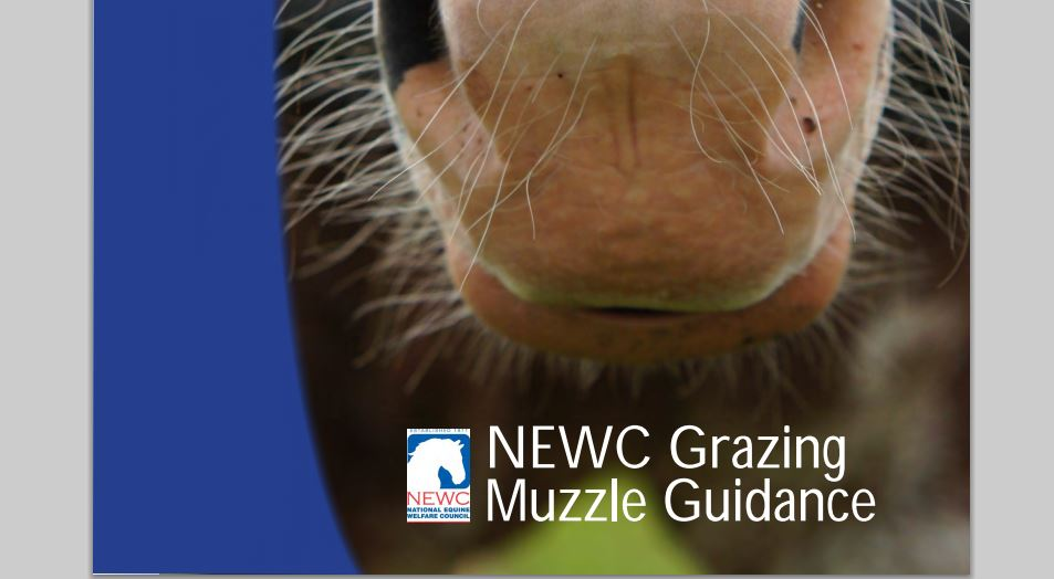 New Grazing Muzzle advice leaflet