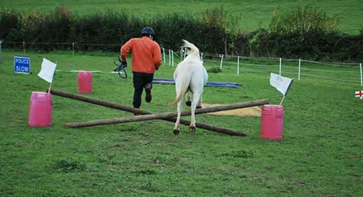 Paddy and Samantha's husband jumping their way to victory at in-hand agility