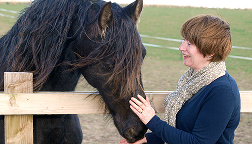 Redwings' own Black Beauty Adoption Star horse Maya