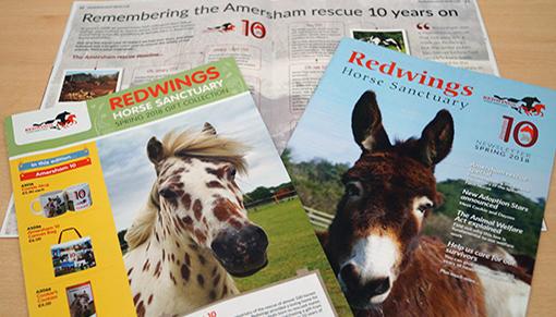 Redwings Spring newsletter 2018