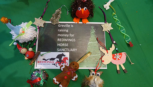 Warwick Preparatory School is fundraising for Redwings
