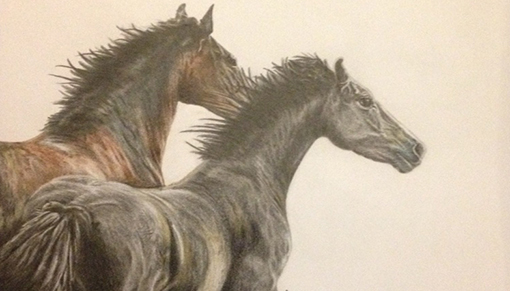 Artist Jo-ann Harrison is donating 10% of sales to Redwings