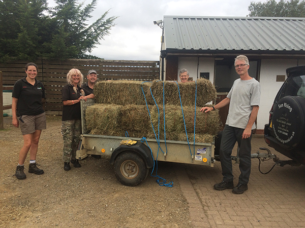 Sun Rising donates 20 bales of hay to Redwings