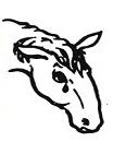 SWHP logo