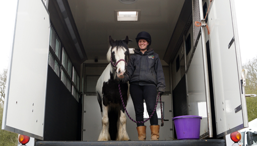 Help with loading and travelling your horse