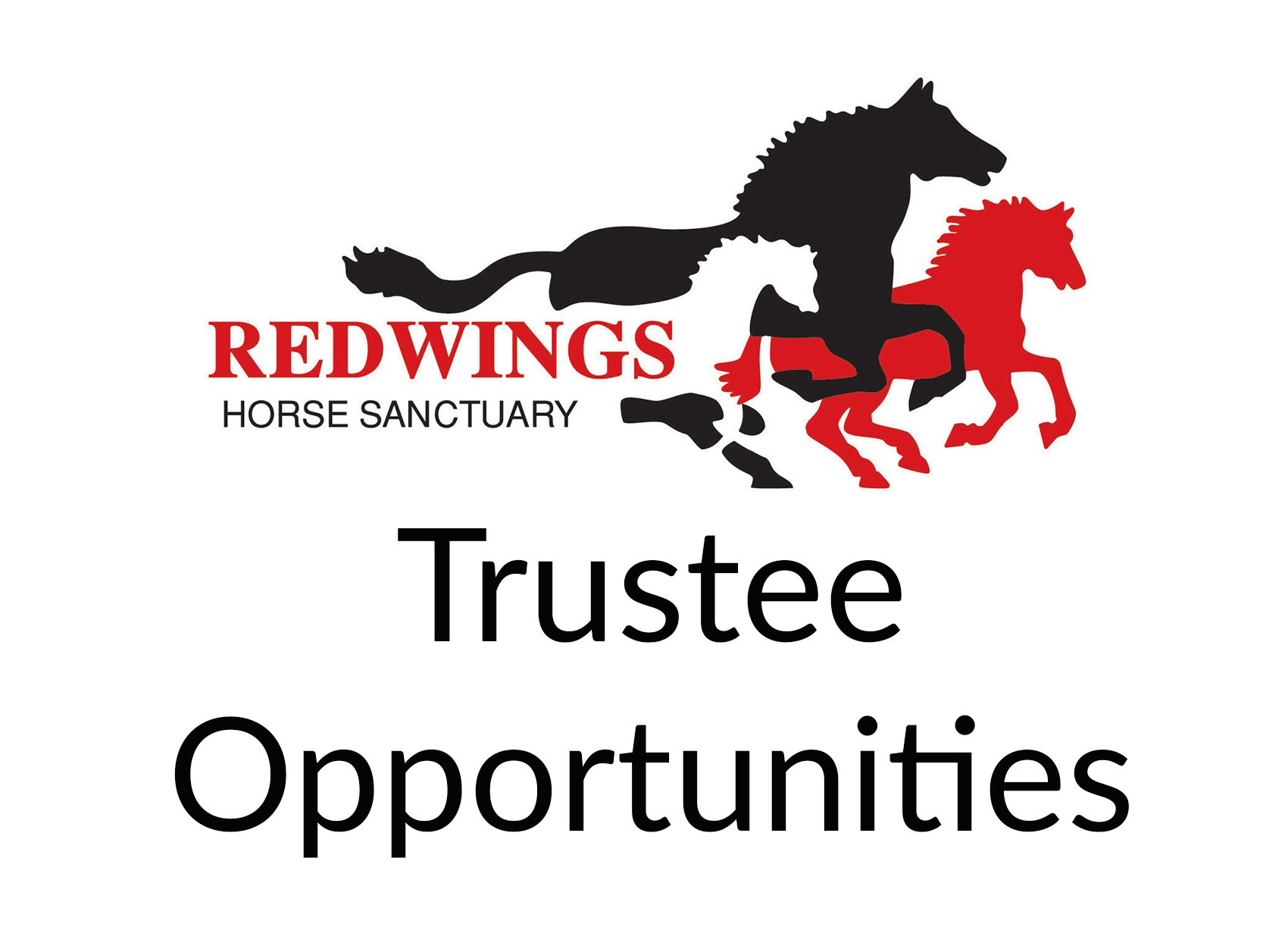 Trustee Opportunities