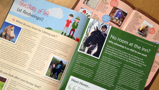 Download the Redwings autumn 2016 newsletter