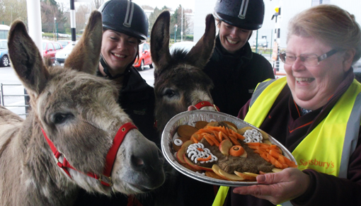 Redwings donkeys Timothy and Cain visit Sainsbury's in Wellesbourne