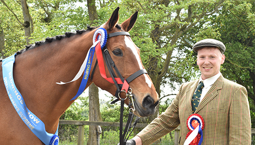 Redwings Show Reserve Supreme Champion  2018