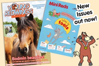 Mini Reds magazine