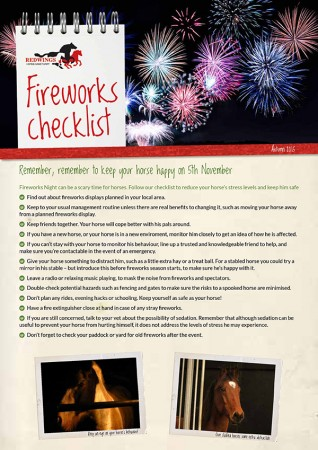 Fireworks advice for horse owners