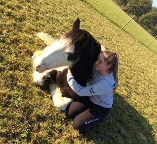 Rehomed Pony Pinky