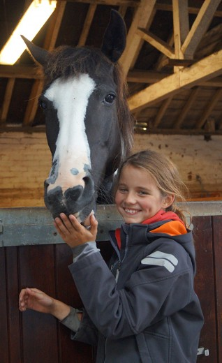 Visitors enjoy Redwings Hapton Open Day