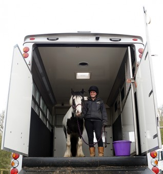 A guide to equine transport and travel