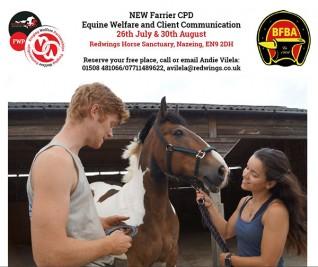 Forging Welfare Partnerships CPD event