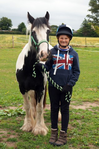 Rehome a rescued horse
