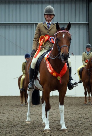 Redwings Show 2016 results