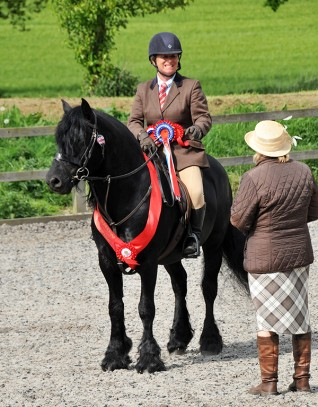 Redwings Show Supreme Champions
