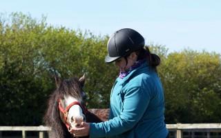 Help horses in need like Cauli