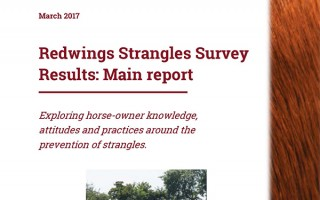 Redwings strangles survey